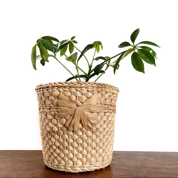 Vintage Woven Wicker Boho Basket Plant Holder